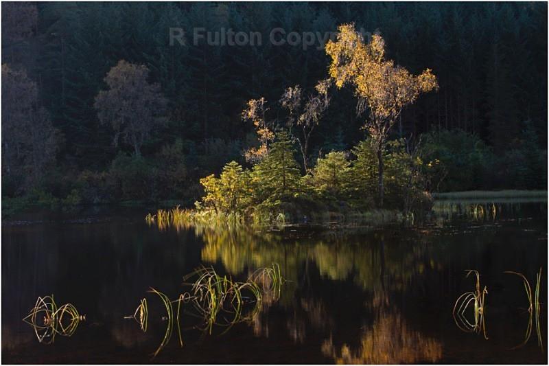 Autumn Lochan - Landscapes