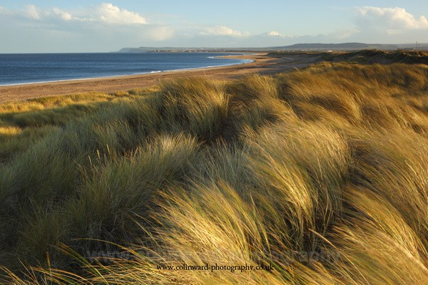 Sand Dunes at Redcar - North Yorkshire and Cleveland