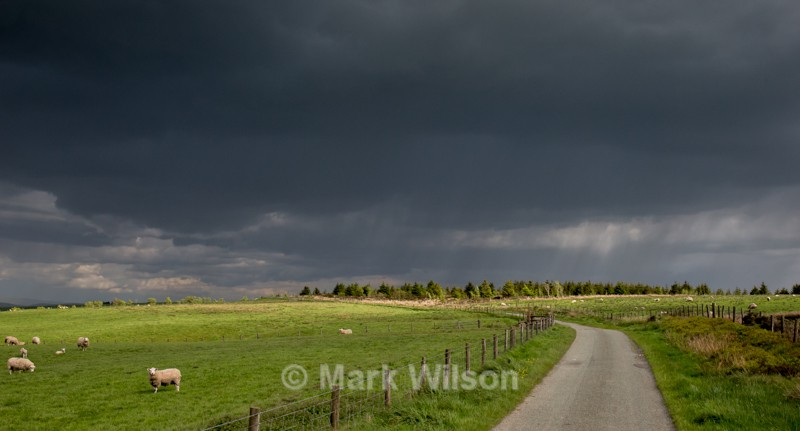 The road to hell? - Land and seascapes