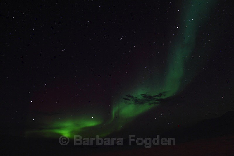 Northern Light in Adventdalen 5386 - Polar night