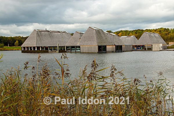 Brockholes 08 - Landscapes