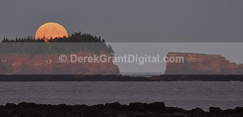 Split Rock Harvest Moon Rise New Brunswick Canada - Sunset/Moonrise