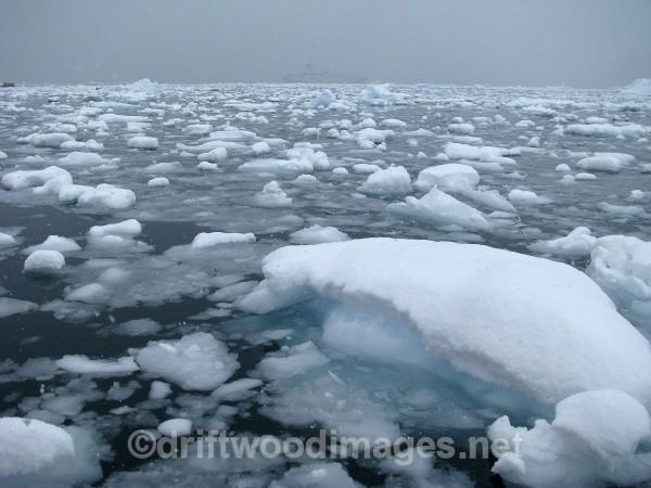 Neko Harbour, Andvord Bay - Antarctica