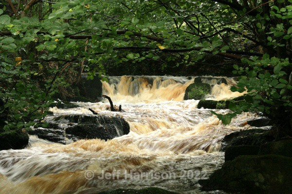 Rathmell Beck 02 (image Rath B 02) - Waterscapes and Waterfalls