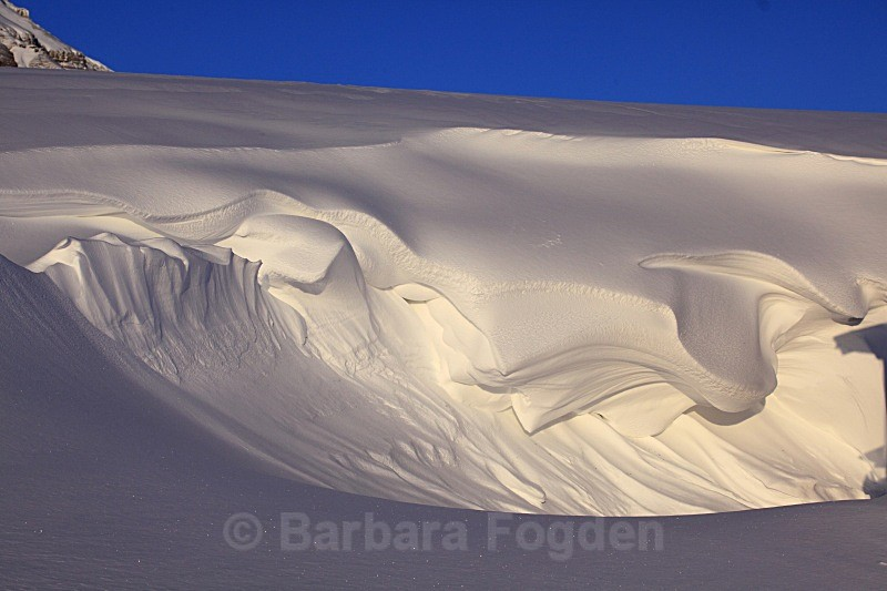 Snow drift 5582 - Winter in the daylight