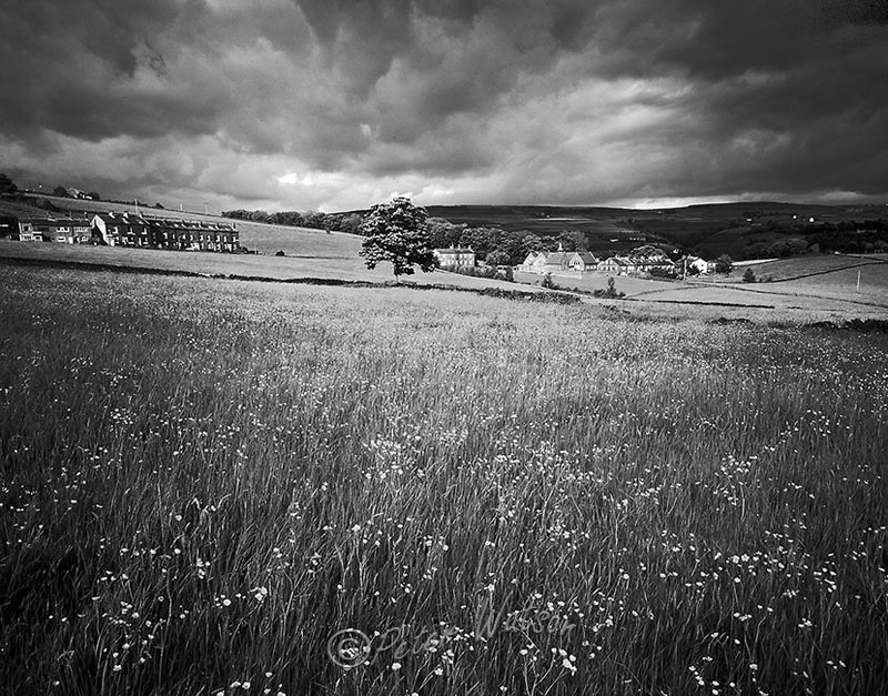 Near Low Moor Yorkshire England - Monochrome