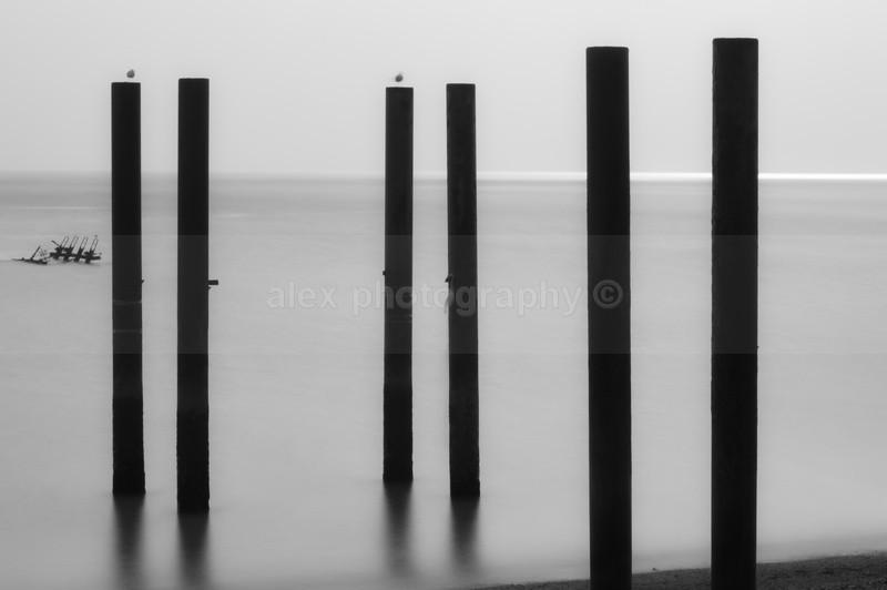 Affection, Brighton - Landscape & Seascape