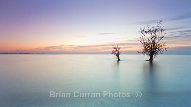 Lough Neagh - Landscape 2