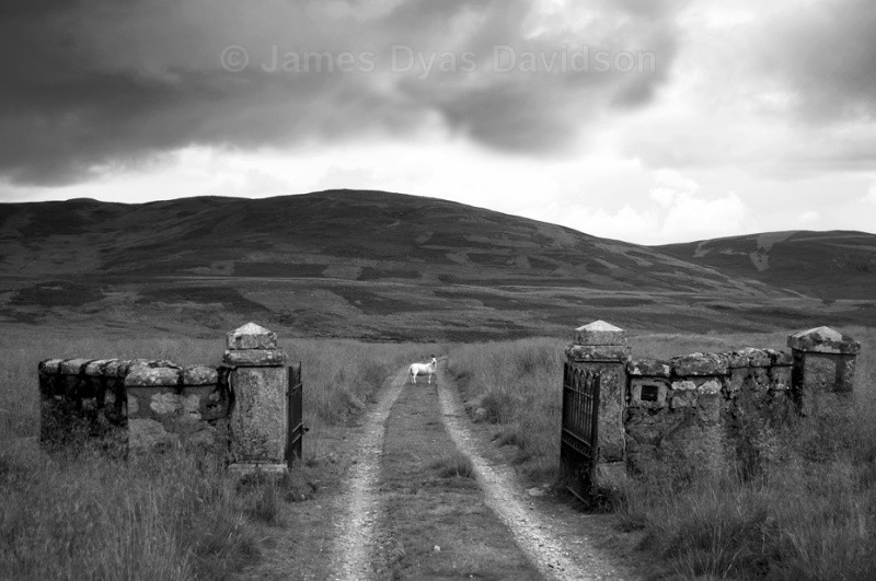 Morven Lodge gates - Glen Gairn