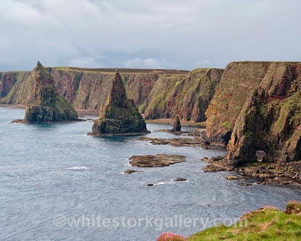 Sea Stacks at John O Groats - Scottish Highlands
