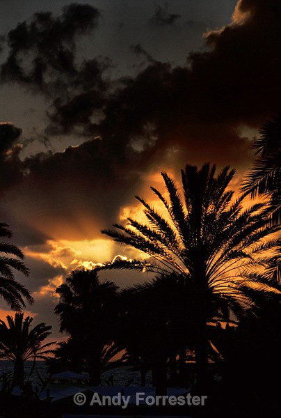Dusk - Pafos - Cyprus 2008