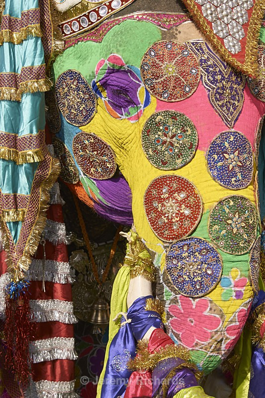 Decorated Elephant - India