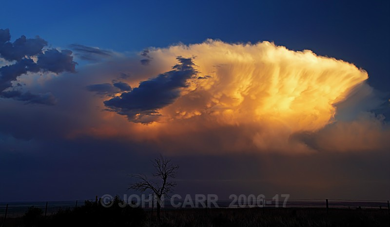 Stunning Cell-3-3019 - A STORMY MONDAY & FRIDAY-NOVEMBER 2012