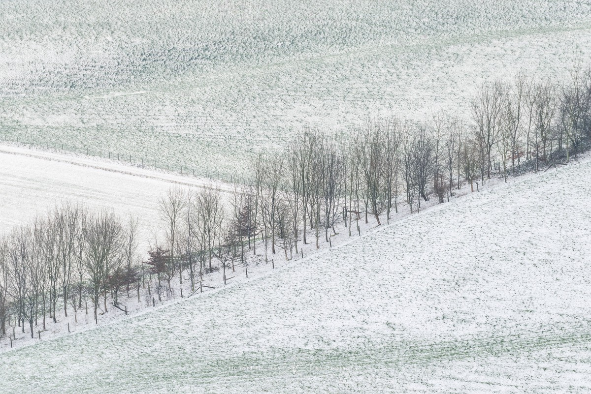 South Downs sprinkling - WINTER