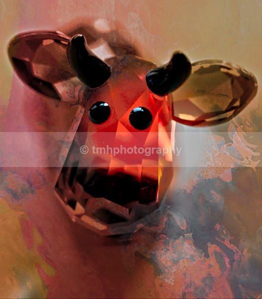 Pastel Cow. - Still Life