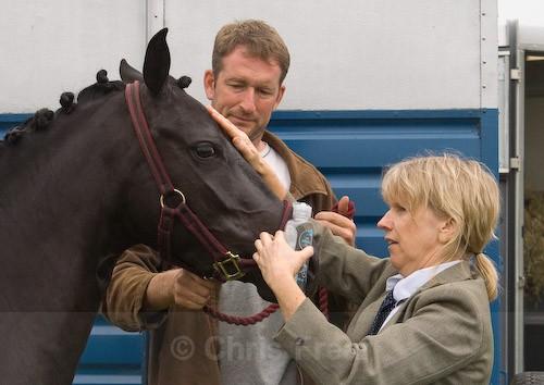 18 - Moniaive Horse Show 2008