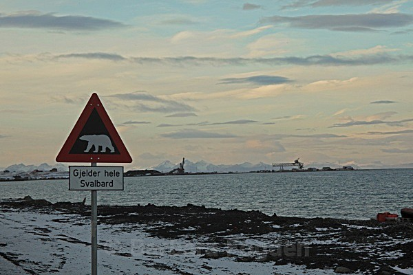 Longyearbyen Traffic sign 6549 - Autumn