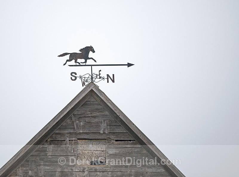 Weather Vane of Yore - Old Barns & Buildings