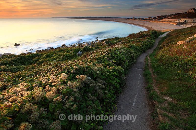 _MG_1525 Chesil Beach. - COAST - Dorset