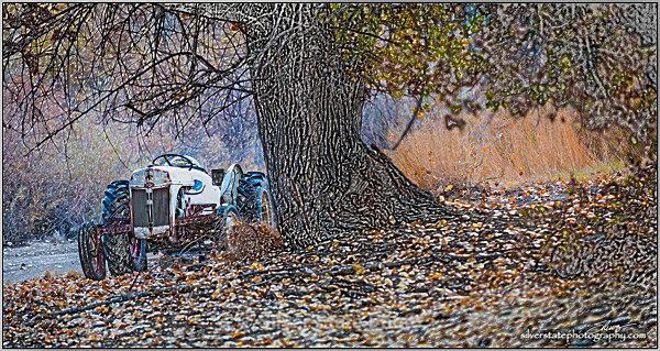 IMG_2765-1-b-web - Nevada (mostly) Landscapes