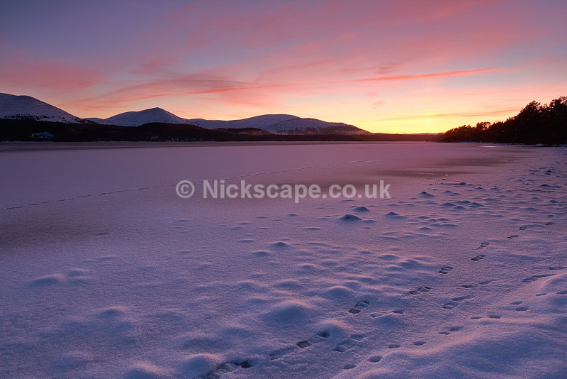 Winter Sunset at Loch Morlich | Aviemore Landscape Photography | Scotland Gallery