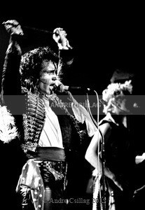 Adam& The Ants - A..