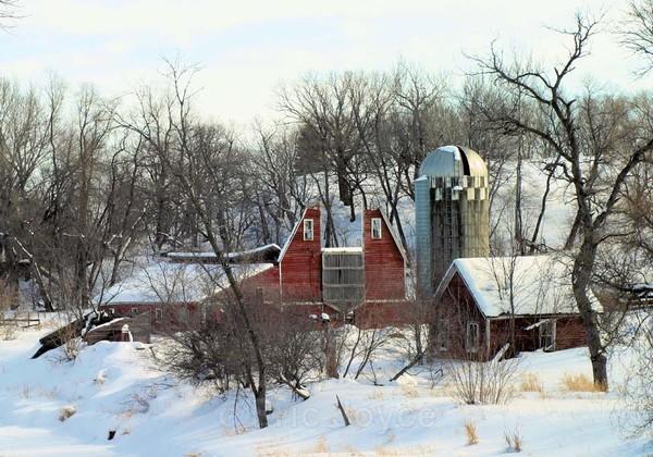 Sheyenne River Barn - Barns & Remnants