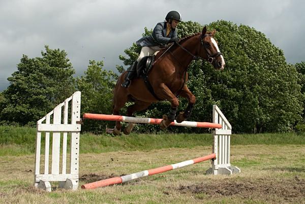 15 - Moniaive Horse Show 2010