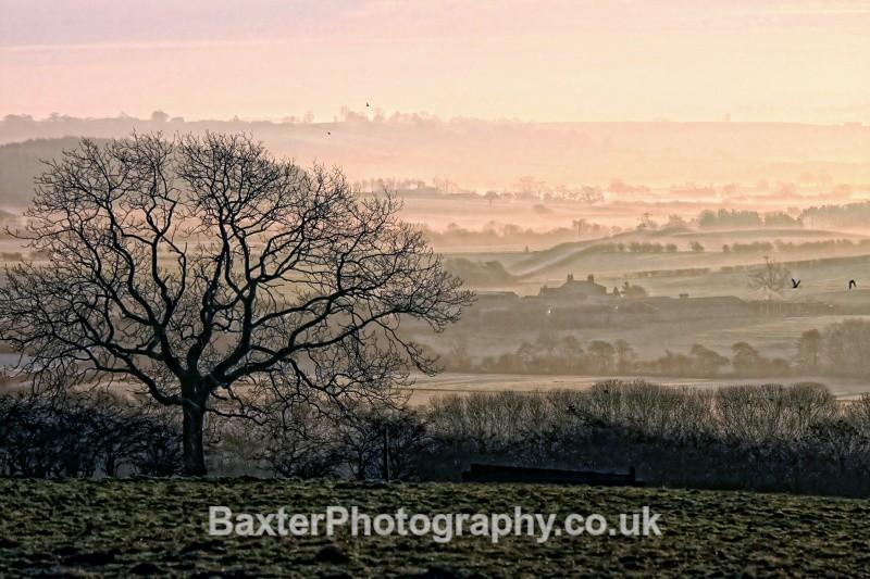 Winter's Veil (True Colours) - Views Around Harrogate: