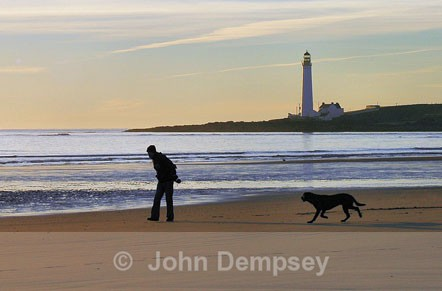 My dog,the beach and I - Walking the Dog
