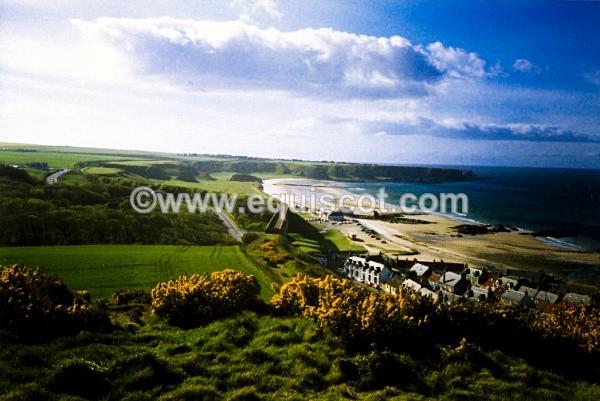 Cullen Bay from Castle Hill, Scotland - Wildlife & Landscape