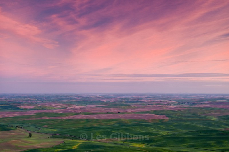 pink sky in morning - Palouse