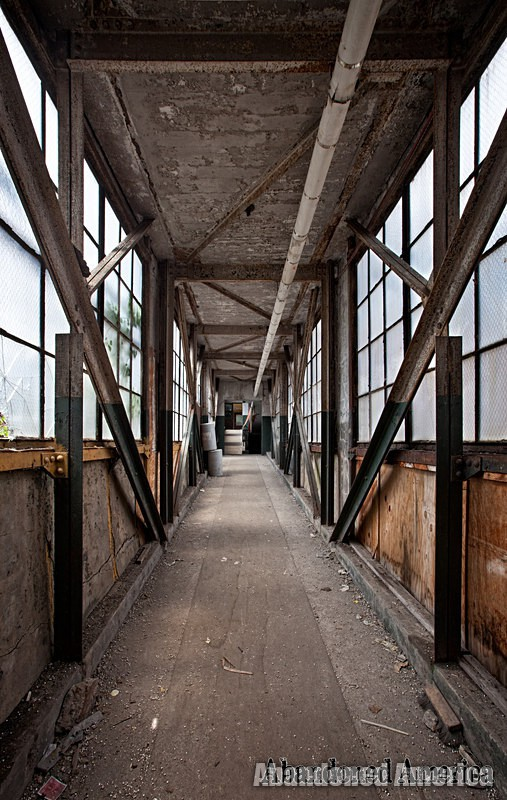 The Scranton Lace Company | Elevated Walkwat - Scranton Lace Company