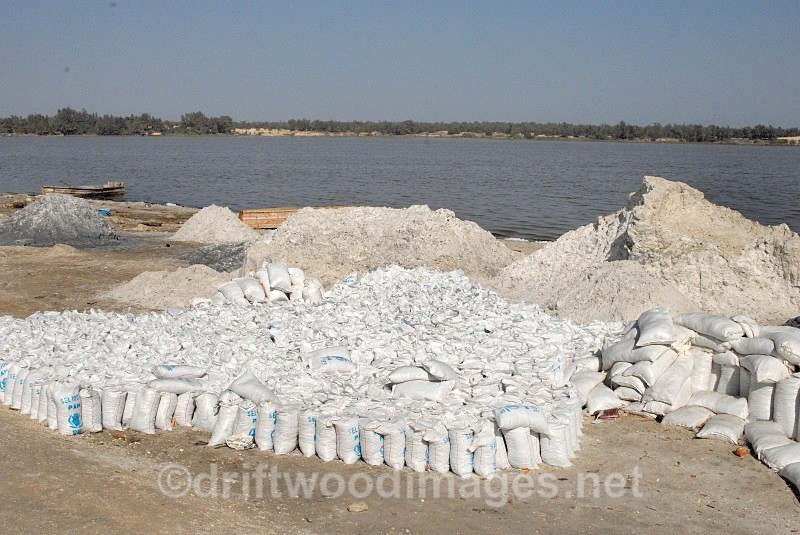 Senegal Lac Rose salt production full salt bags 2 - Salt Production in Senegal