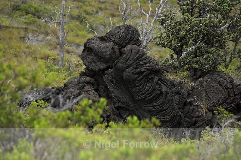 Lava mound, Kealakomo Overlook, Hawaii - Hawaiian Islands, USA