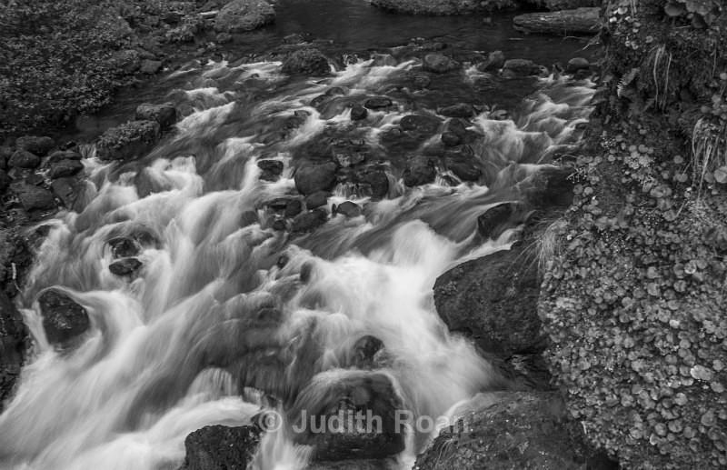 Wahclella Falls Trail - Pacific Northwest