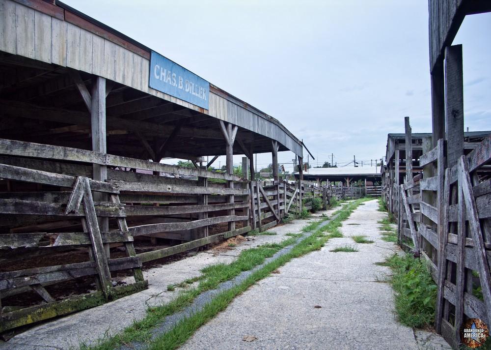 The Lancaster Stockyards | Chas B. Diller's Pens - Lancaster Stockyard