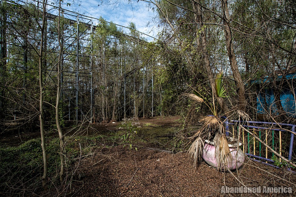 Six Flags (New Orleans, LA) | Overgrown - Six Flags New Orleans