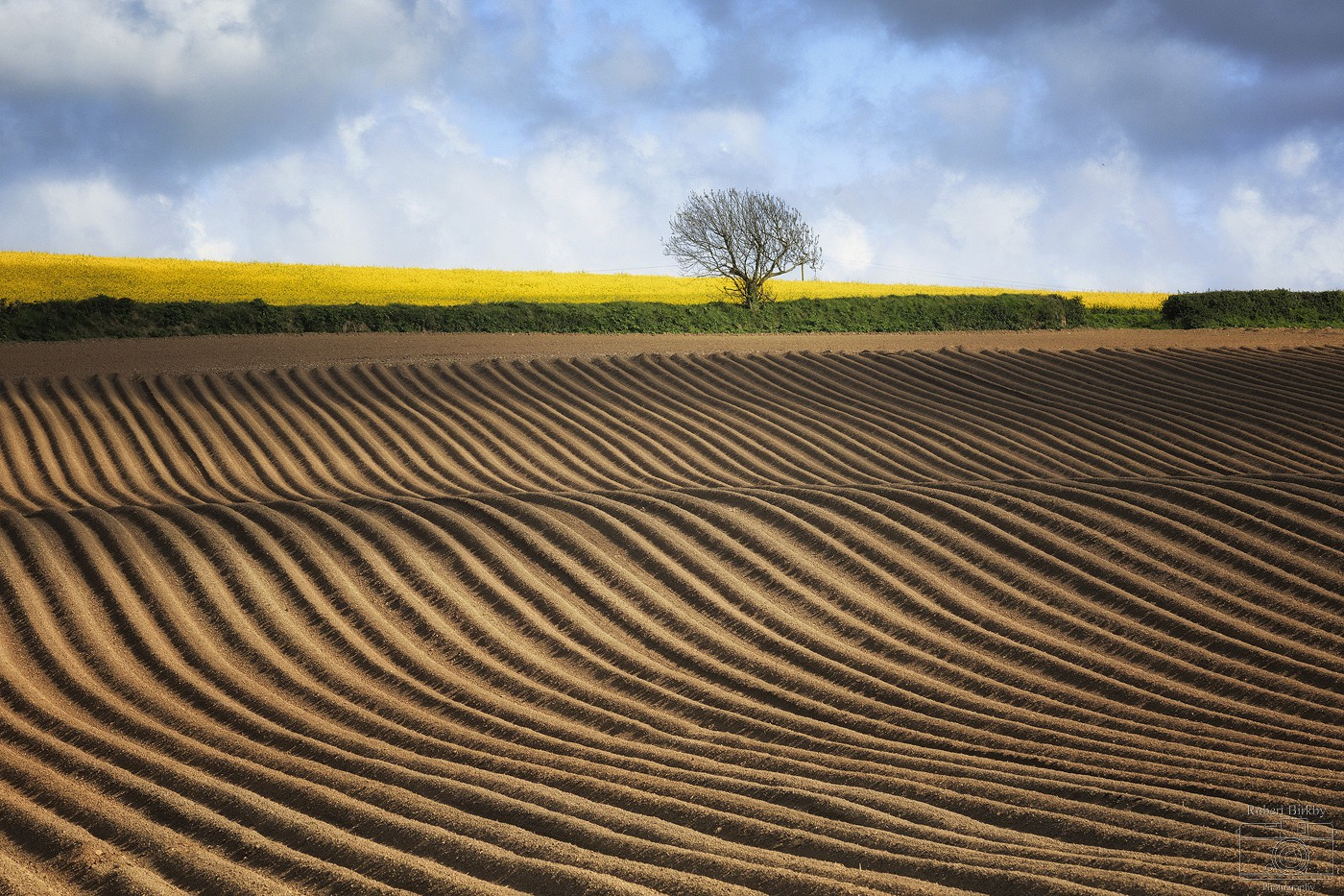 Wavy Lines - England & Wales