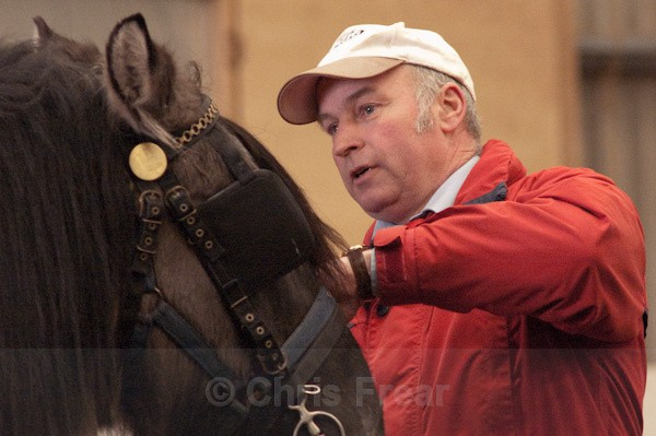 4 - Equestrian Photography
