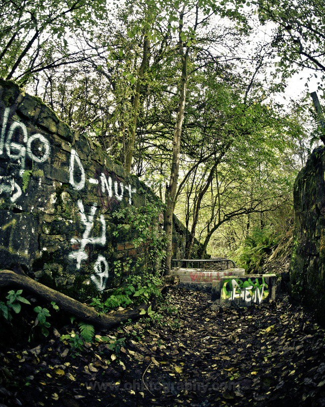 Derelict Pathway - The outdoors