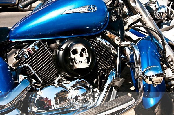 Skull in Bike - Engines