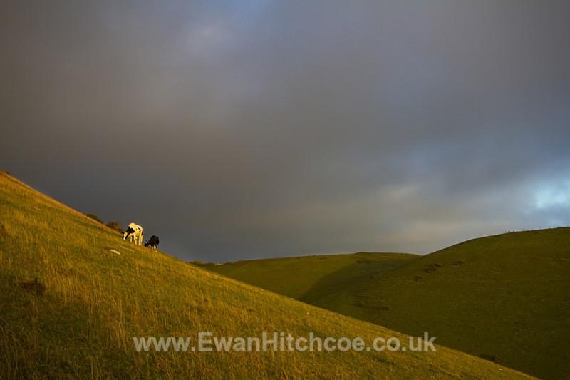 Rolling hills - Landscapes
