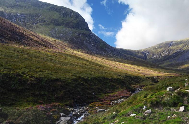 Donard Valley - At the Foot of the Mountain