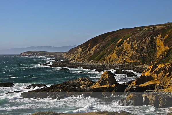 Wild Pacific Coast - SeaScapes