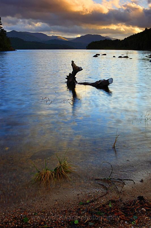 Loch Affric      ref 8504 - West Highlands