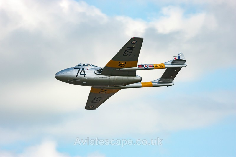 de Havilland Vampire T11 - Cold War Military