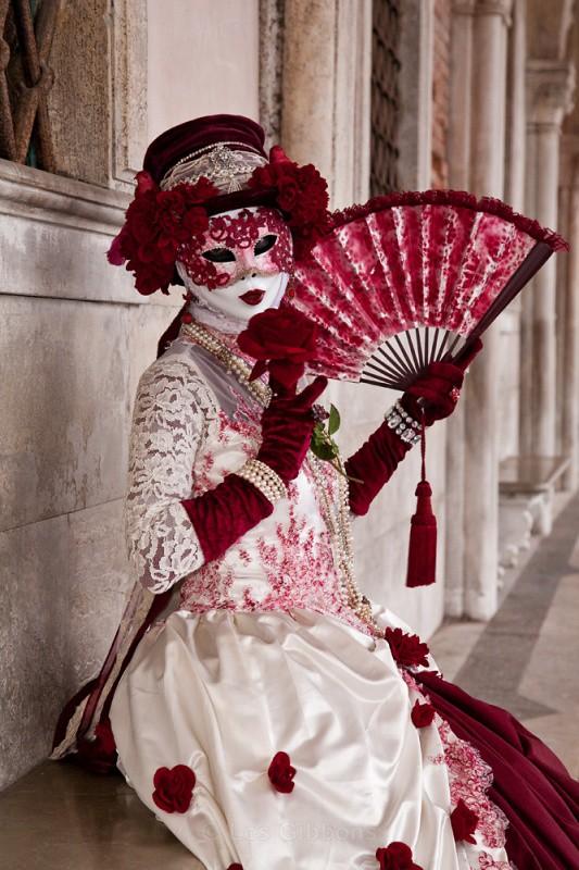 red rose - Venice
