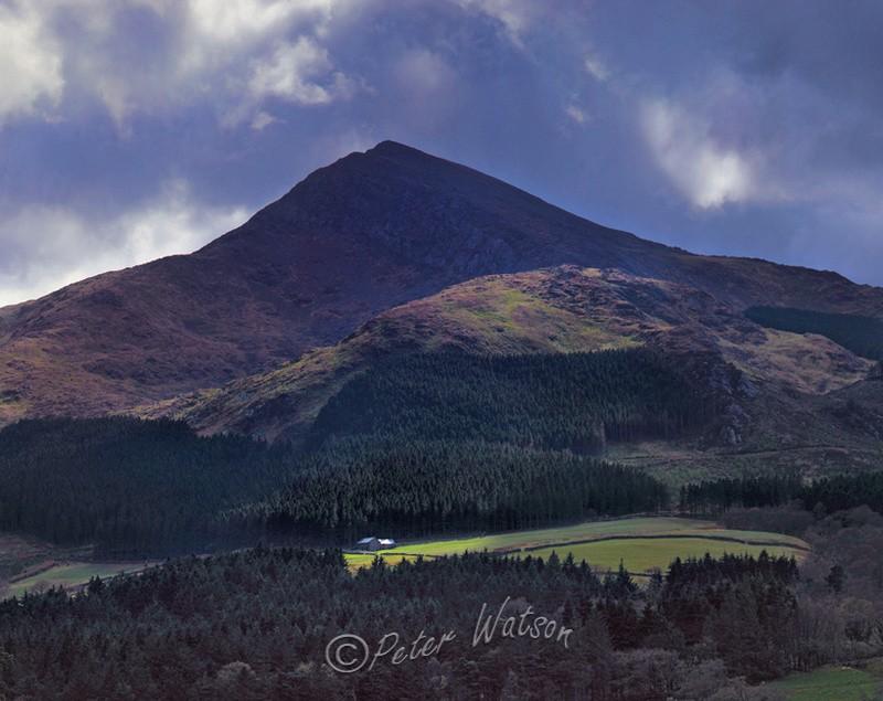 Beddgelert Forest Snowdonia - Wales