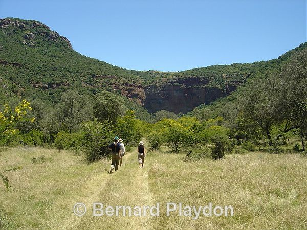 Hiking towards the kloof - Glen Avon Falls
